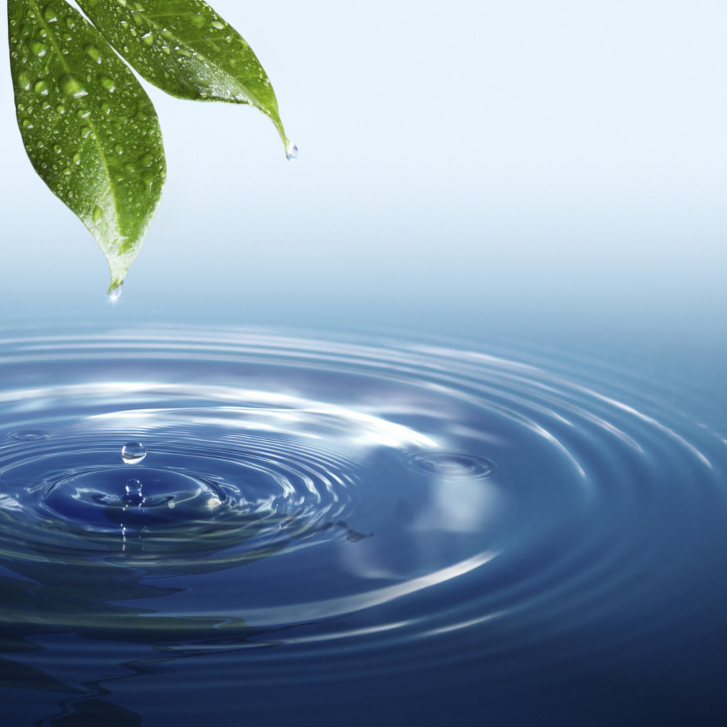 Key Activity of CWP